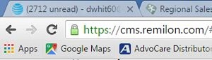 SSL labeling in browser