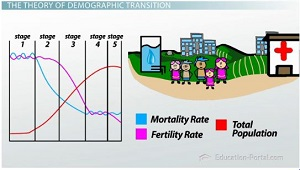 stage 1 demographic transition examples in essays