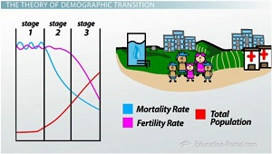 Stage Three of Demographic Transition