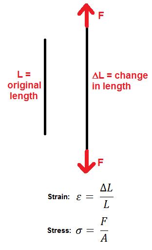 Elasticity Of Materials Moduli Measurements Study Com