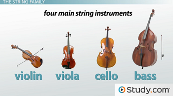 Instrument Families of the Orchestra: String, Woodwind, Brass