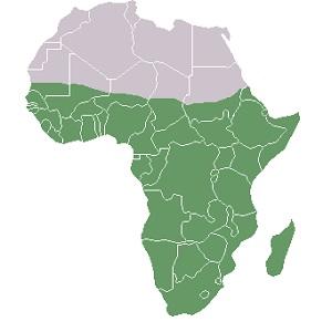 Sub-Saharan Africa: People & Culture | Study.com