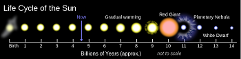 The Life Cycle of the Sun