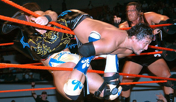 professional wrestlers in action