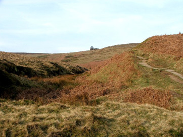 What literary elements are in the novel Wuthering Heights?
