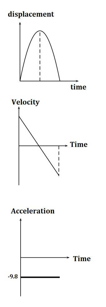 Overview of graphs of free fall motion video lesson transcript w ccuart Gallery