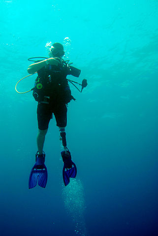 Rapid ascension during scuba diving can lead to arterial air embolisms