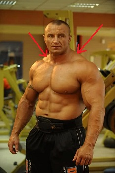 Image result for traps muscle