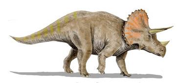 Ceratopsian Dinosaurs: Types & Facts | Study.com