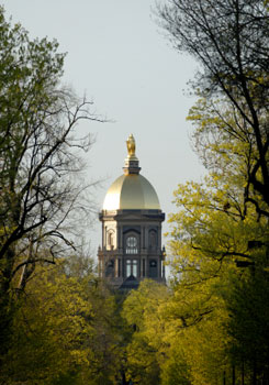 Fighting Irish: Spotlight on Notre Dame
