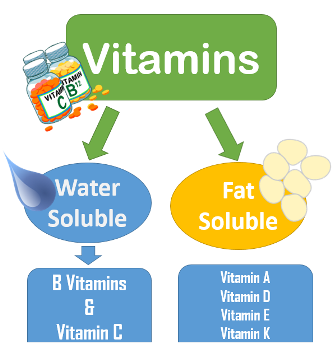 fat and watersoluble vitamins essay Do current fortification and supplementation programs assure adequate intake  of fat-soluble vitamins in belgian infants, toddlers, pregnant.