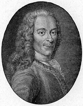 commentary on voltaires candide Voltaire's candide complete study notes search this site  with commentary quotations from the book are given in french  (if voltaire is attacking optimism.
