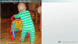 Walking Developmental Milestone