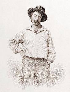 The Wound Dresser By Walt Whitman