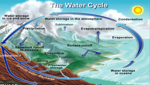 The hydrologic cycle definition process diagram video lesson hydrological cycle ccuart Gallery