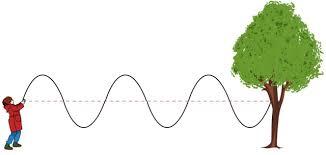Transverse Waves Lesson for Kids | Study.com