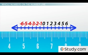 whole number on number line