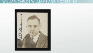 the lessons learned in the red wheelbarrow by williams carlos williams William carlos williams lesson plans and and the red wheel barrow by william carlos style using the red wheelbarrow by william carlos williams as.
