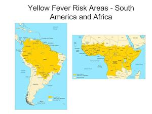 yellow fever virus risk areas