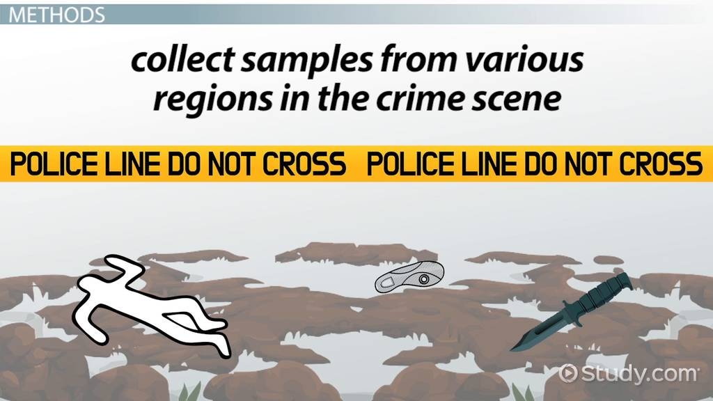 Forensic Soil Analysis Evidence Testing Video Lesson Transcript Study Com