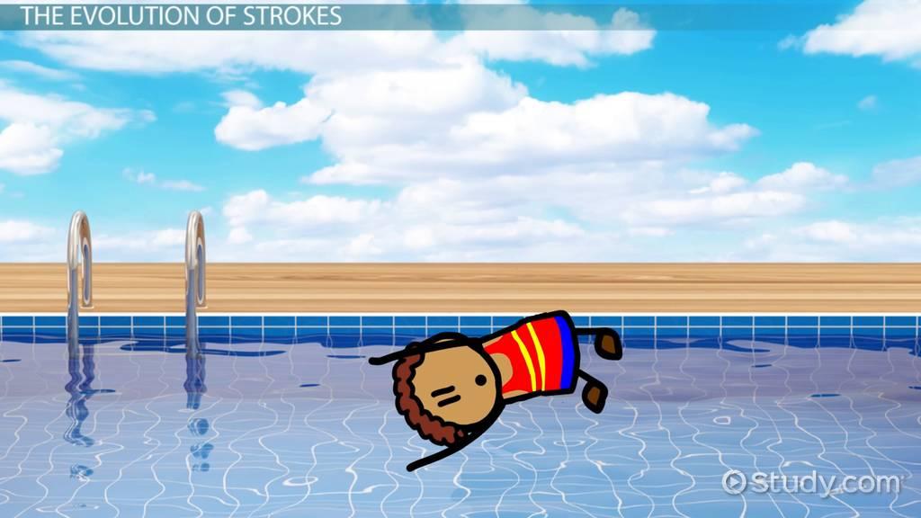 The History Evolution Of Swimming Video Lesson Transcript Study Com
