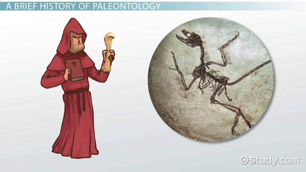 How do paleontologists use radiometric hookup