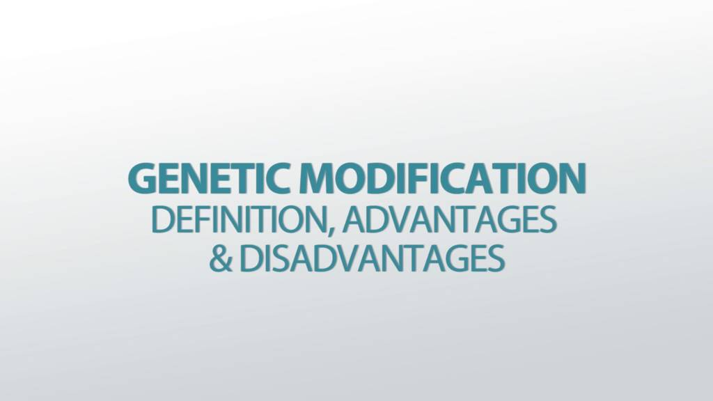 Is Your MTT Assay Really the Best Choice?