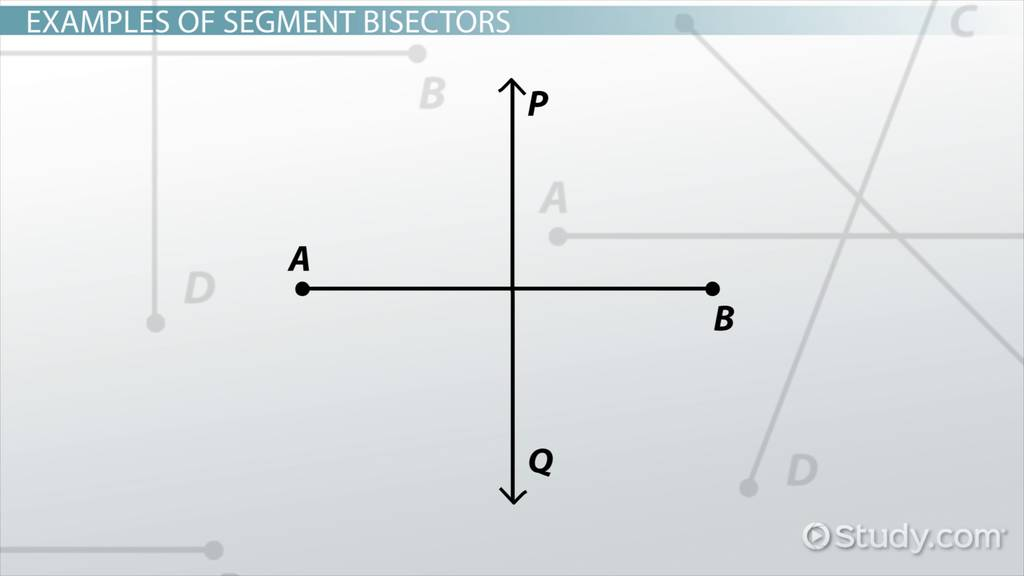 Segment Bisector Definition Example Video Lesson Transcript