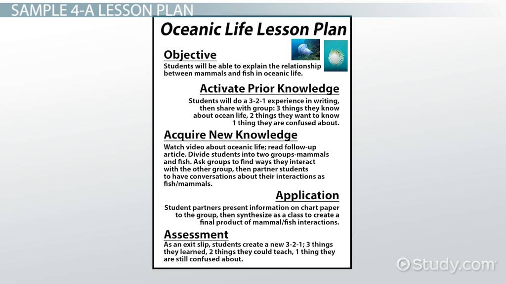 4As Lesson Plan Sample - Video & Lesson Transcript | Study.Com