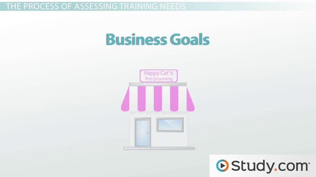 Assessing Training Needs of an Organization - Video ...