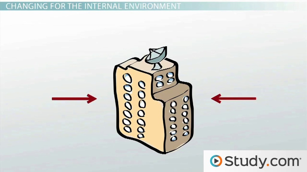how internal and external factors drive organizational change