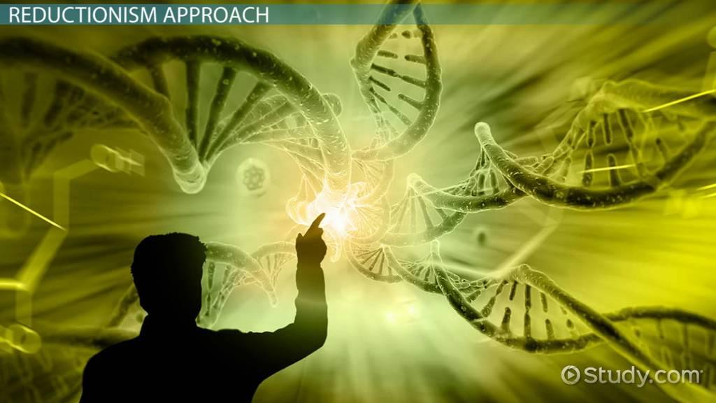 Nursing School Online >> Reductionism in Biology: Definition & Examples - Video ...