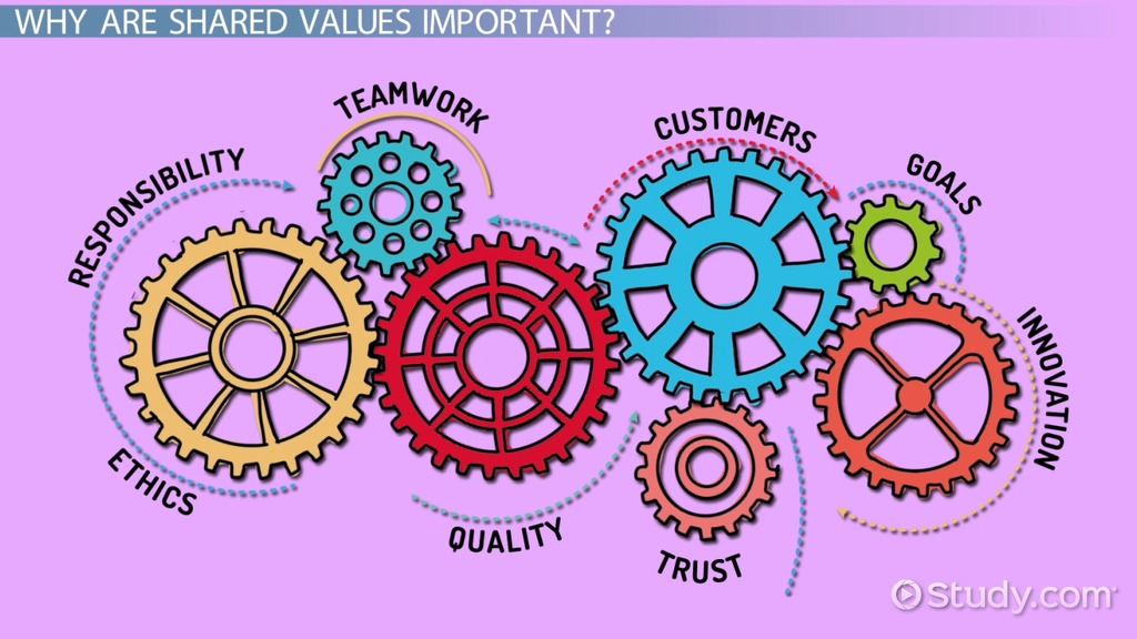 Shared Values In An Organization Definition Amp Explanation