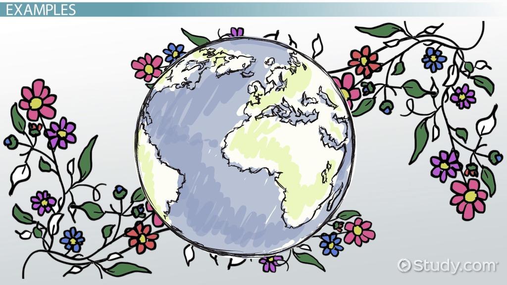 plant reproduction essay