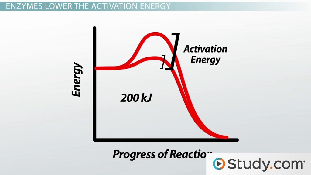 reaction rates activation energy factors affecting the rate of