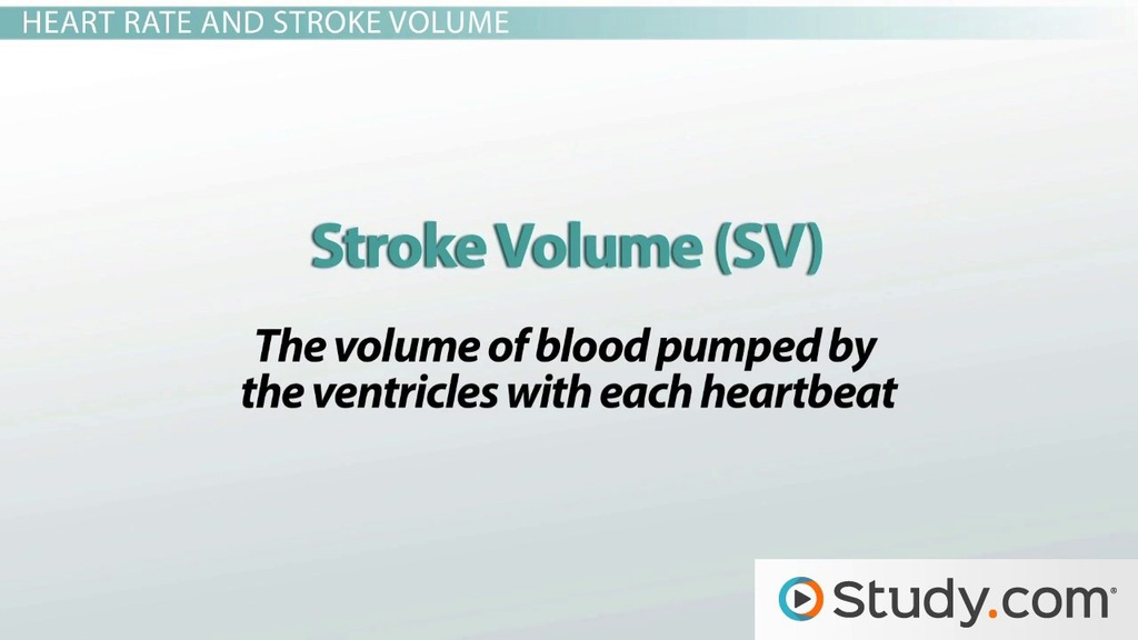 Heart Rate Cardiac Output Stroke Volume Video Lesson