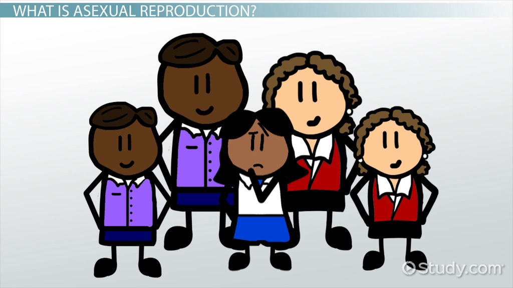 Asexual and sexual reproduction comparison of republican