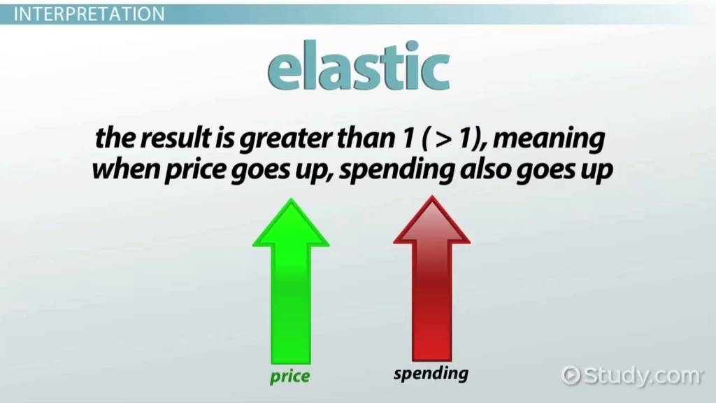 What Is Elasticity In Economics Definition Theory Formula Video Lesson Transcript Study Com