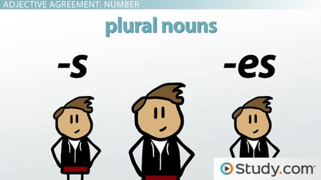 Adjective Agreement In Spanish Grammar Video Lesson Transcript