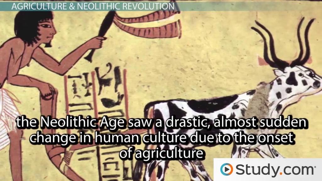 neolithic revolution and scientific revolution essay