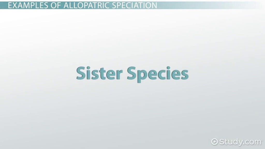 Allopatric Speciation Example Definition Video Lesson