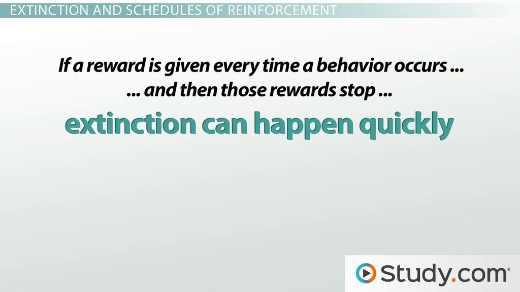Reducing Undesirable Behaviors In The Classroom Video Lesson