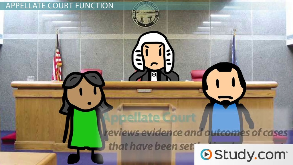 The Court System Trial Appellate Amp Supreme Court Video