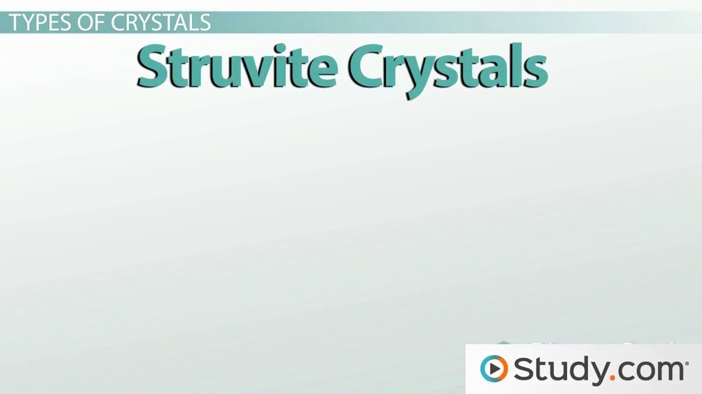 Crystals in Urine: Meaning and Causes - Video & Lesson Transcript ...