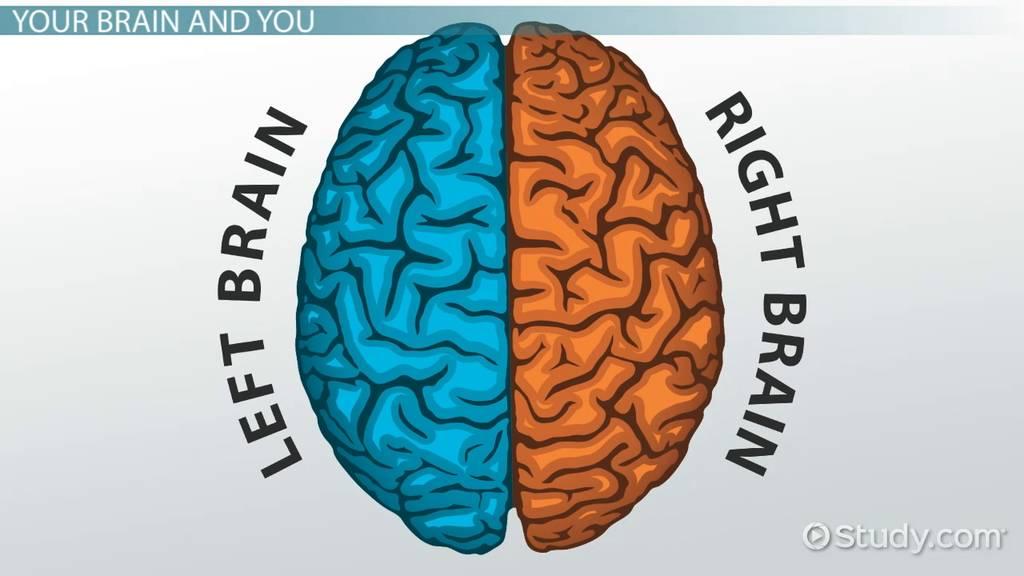 left hemisphere vs right hemisphere stroke