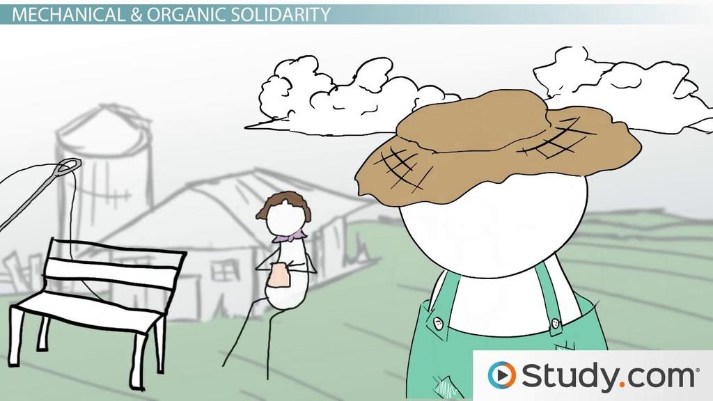 mechanical organic solidarity