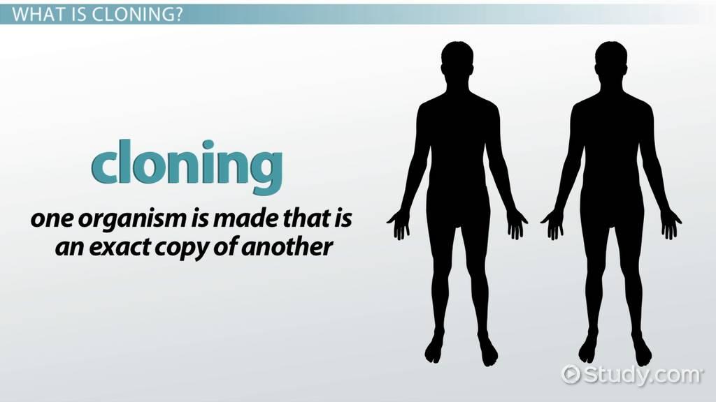 human cloning advantages essay or dissertation definition