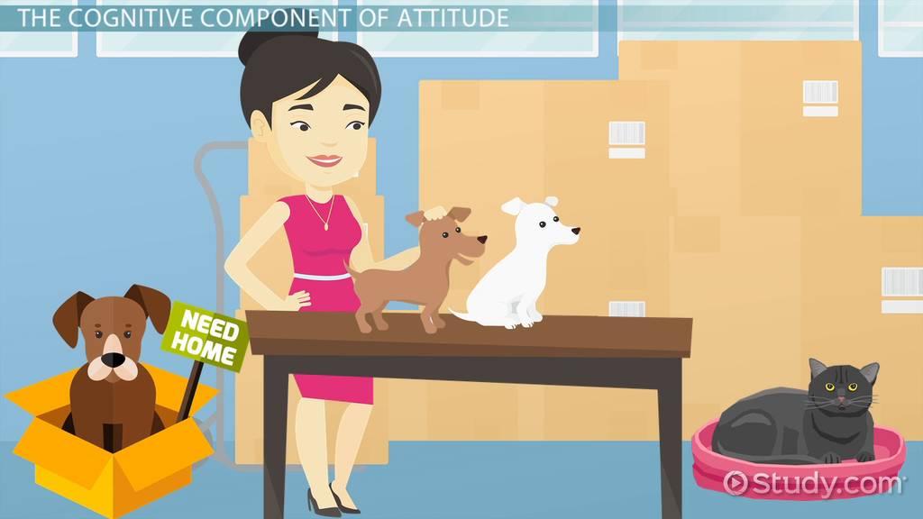 Attitude | Definition of Attitude at Dictionary.com