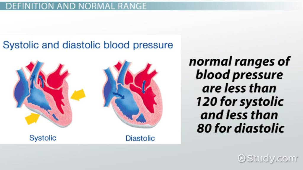 What Is Pulse Pressure Definition Variation Normal Range Video Lesson Transcript Study Com