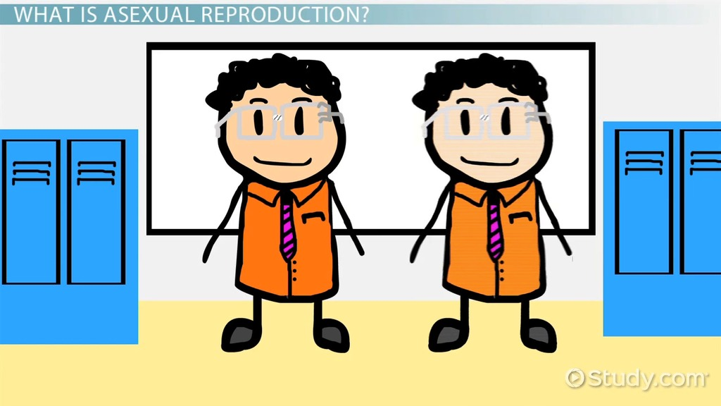 Difference parthenogenesis and asexual reproduction video